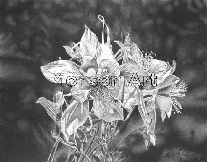 Monson170207-02