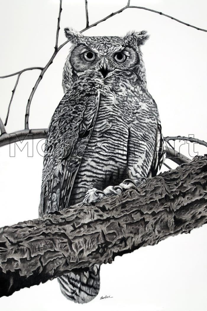 Monson190625-01 Great Horned Owl 40×60