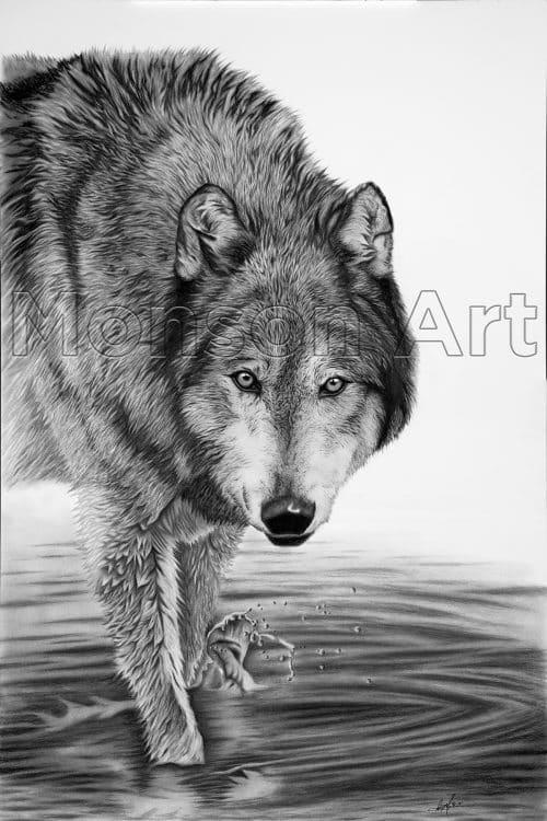 Monson190927-01 40×60 Water Wolf